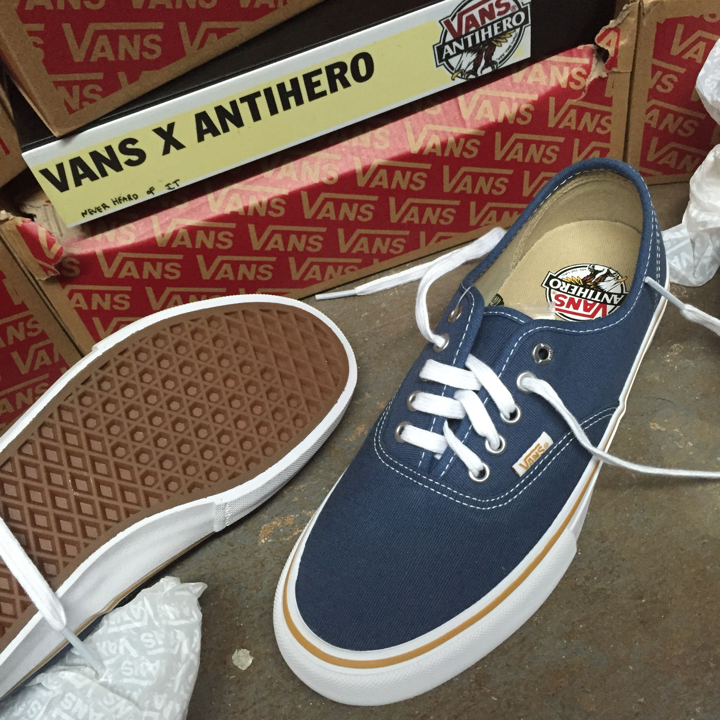 Vans x Antihero Authentic Pro Julien Stranger